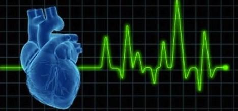 Pode a Frequência Cardíaca Ser Útil no Controlo das Intensidades de Treino?
