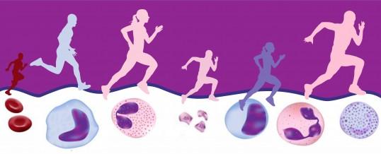 Exercício Físico na Prevenção Contra o Câncer.