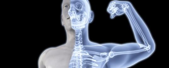 Densidade Mineral Óssea e Osteoporose, Importância do Exercício Físico na Preservação dos Ossos.