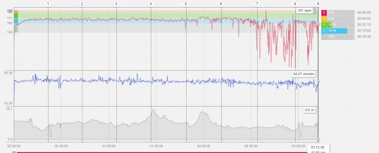 Como Evitar a Desaceleração na Maratona?